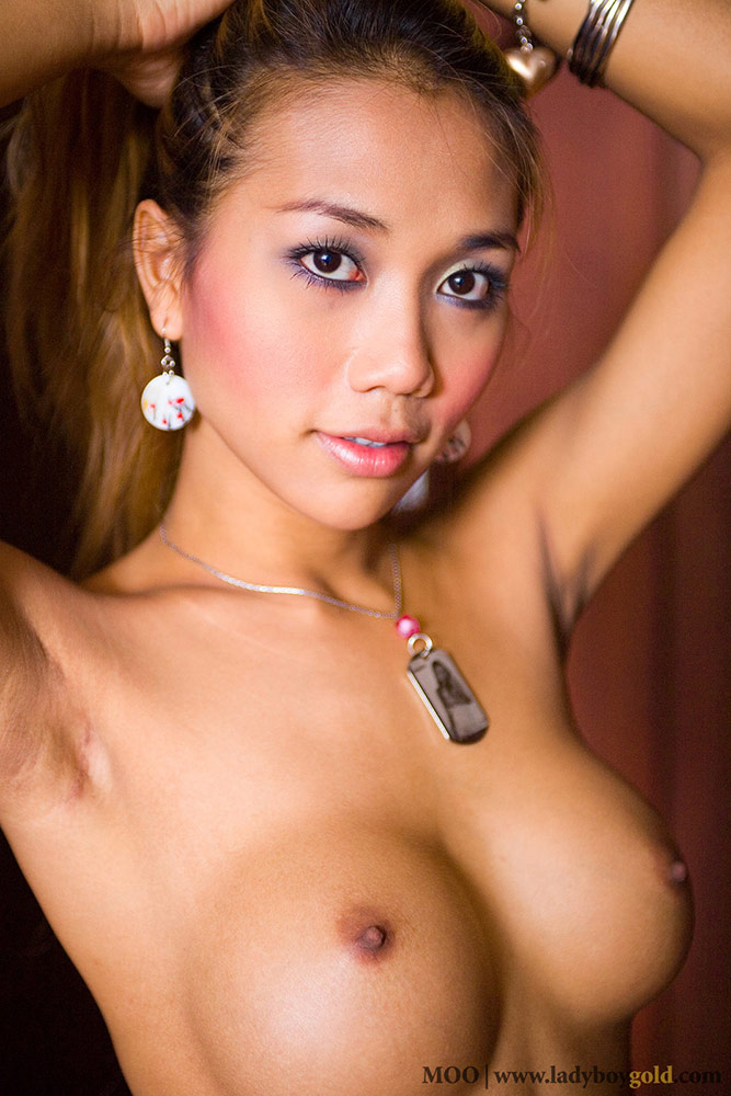 Free Movies Of Ladyboy Moo