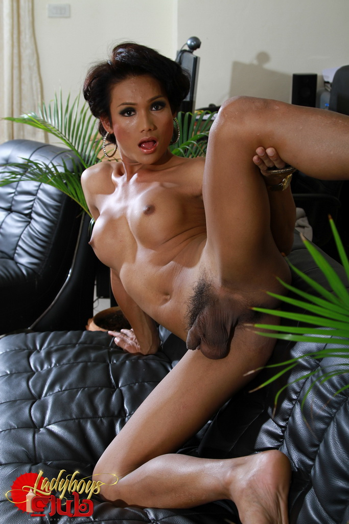 pics stripping Asian ladyboys
