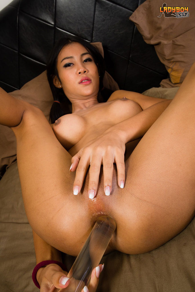 Asian Dildo Fuck
