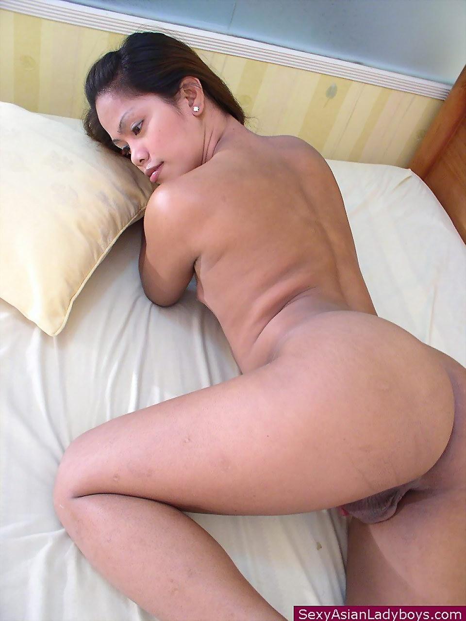 Naked asian trannies remarkable, rather