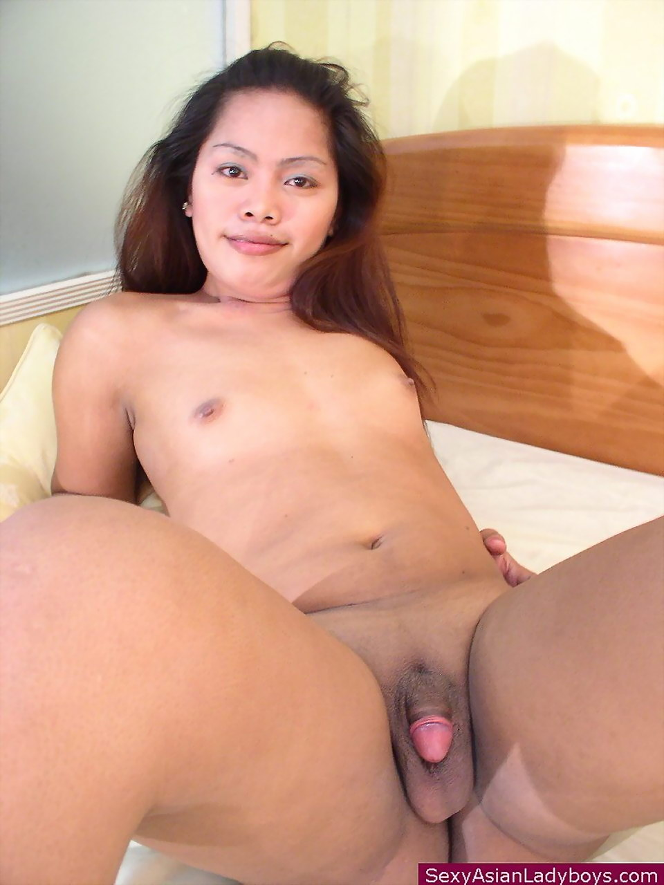 asian ladyboy galleries -